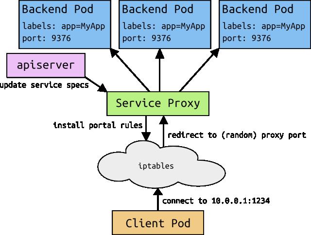 services_detail